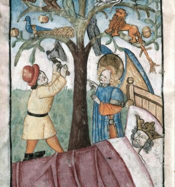 Nabuchodonosor tree
